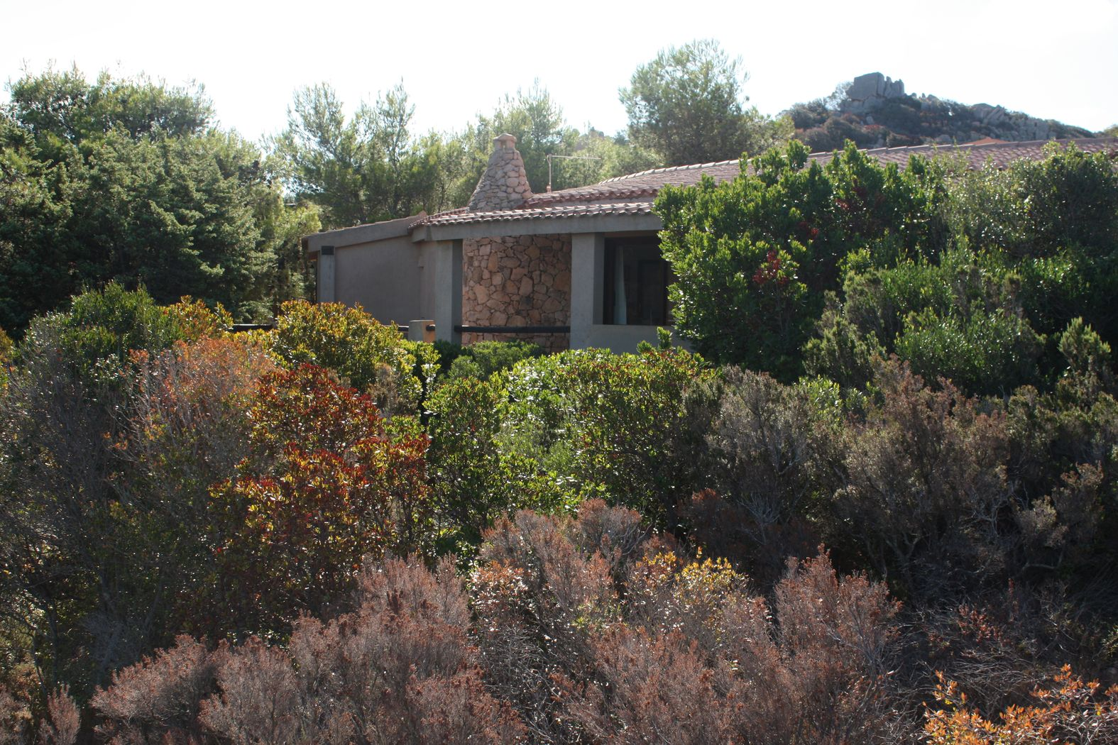 villa-costa-paradiso-vendita (45)