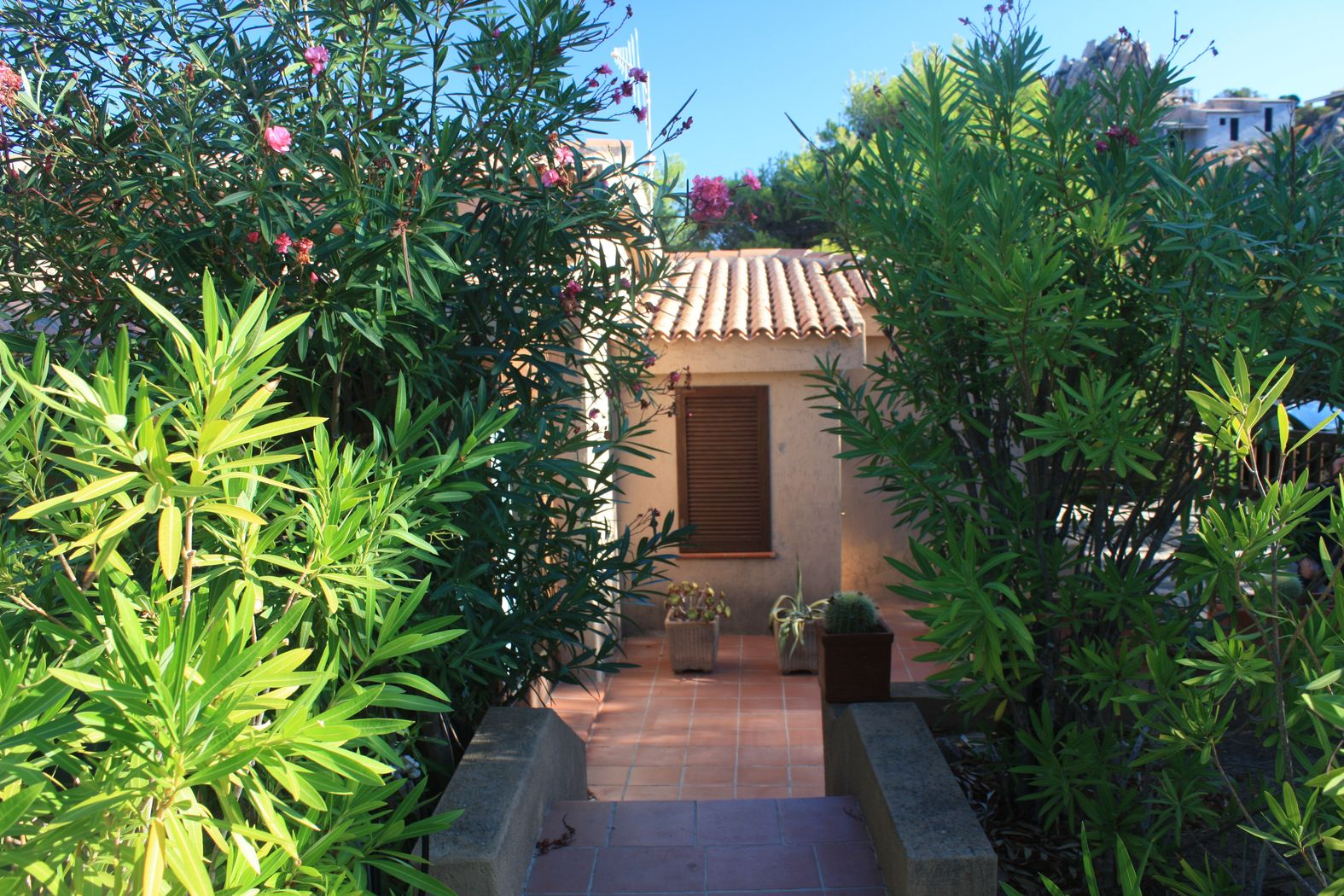 villa-costa-paradiso-vendita (5)